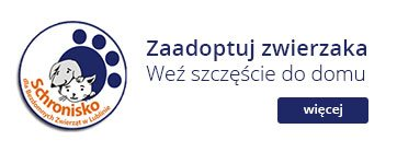 Schronisko dla bezdomnych Zwierząt w Lublinie